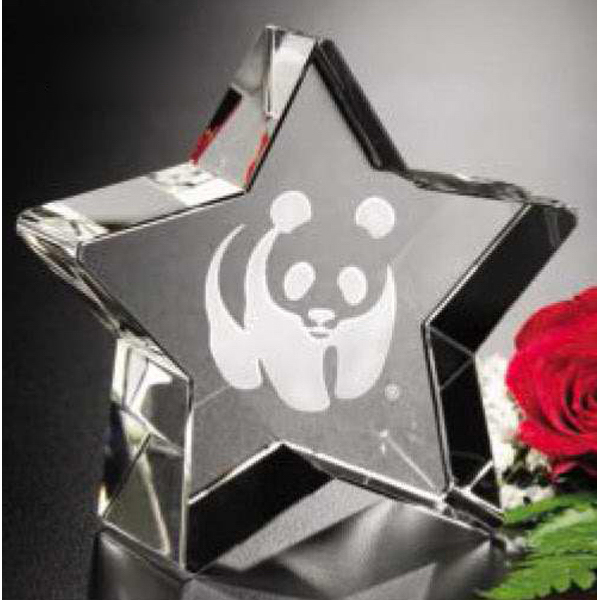 Customized Superstar Award