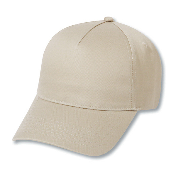 Imprinted Five panel low profile pro style cap