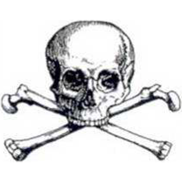 Promotional Temporary Large Skull and Bones Tattoos
