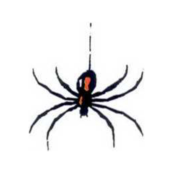 Printed Temporary Spider Tattoo