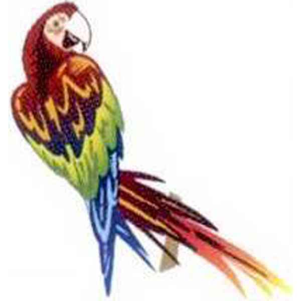 Imprinted Temporary Parrot Tattoos
