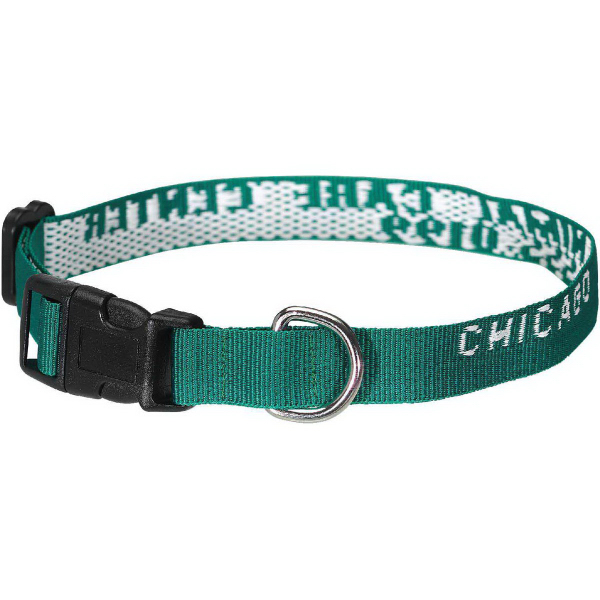 Custom Classic Pet Collar