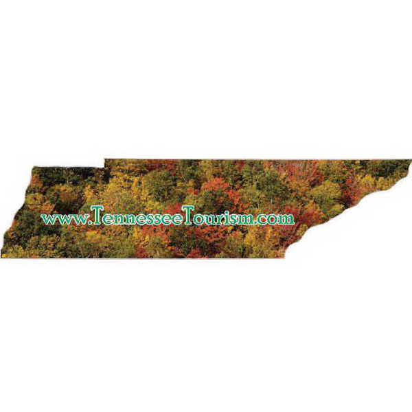Promotional Tennessee Magnet - Series 210