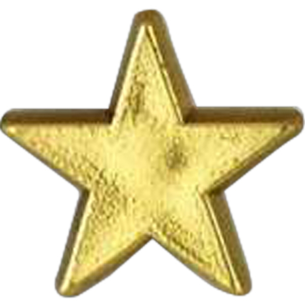 Promotional Plastic Lapel Pin