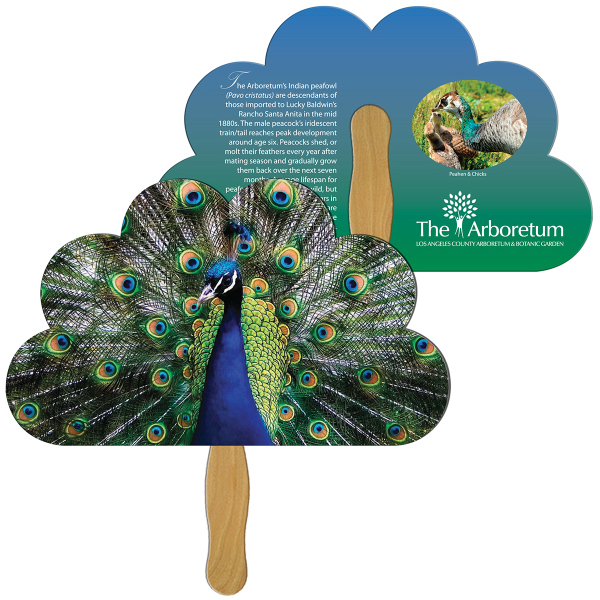 Custom Cloud full color fan