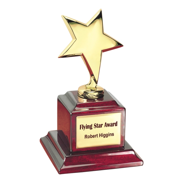 Customized Flying Star Award