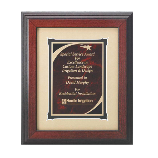 Personalized Shooting Star Plate Award