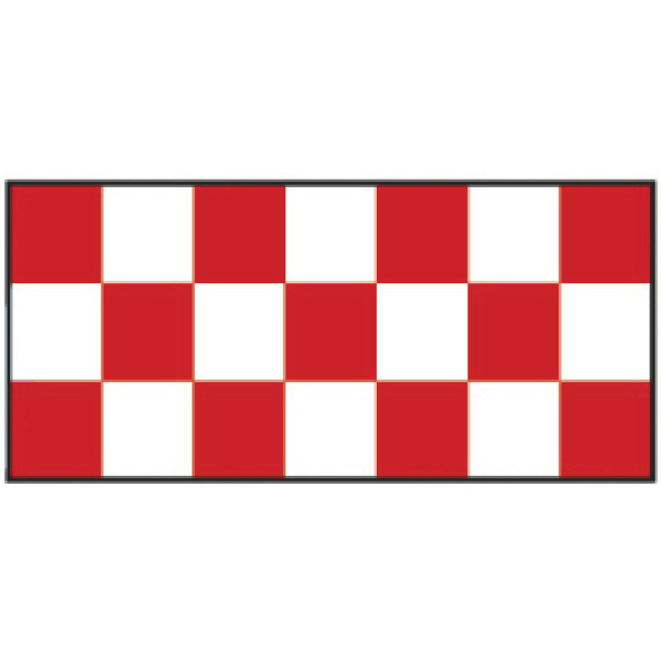 Customized Red Checker Wristband