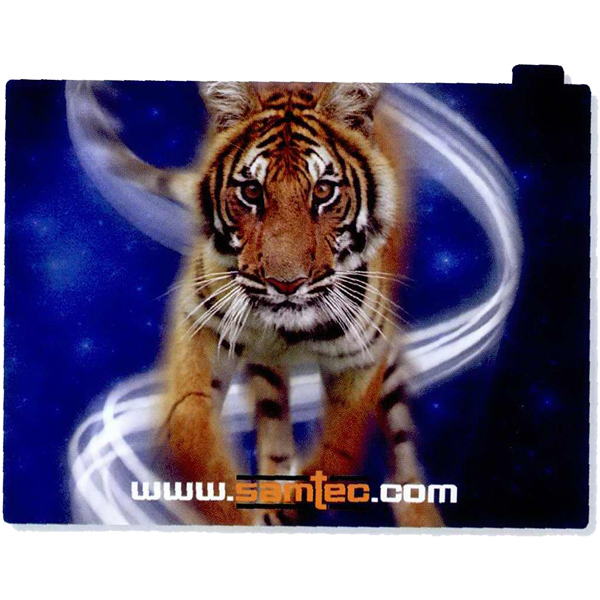 Customized Full color iPad skin