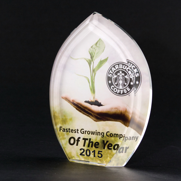 "Promotional Full-color lead crystal maple leaf award- 4 1/2"" x 5 7/8"""