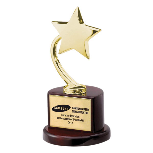 Custom Gold Flying Star Award