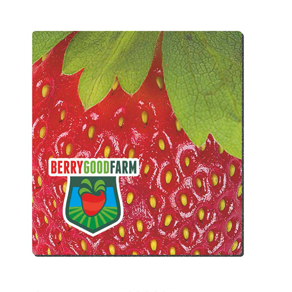 Promotional Standard Size Fabric Mouse Pad